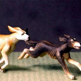 Running hound