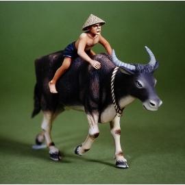 Water buffalo & Boy