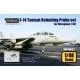 F-14 Tomcat Refueling Probe set (for Hasegawa 1/48)