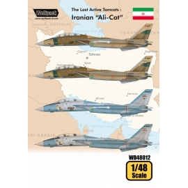 "The Last Active Tomcats - Iranian ""Alicat"" (F-14A Tomcat)"