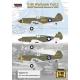 P-40 Warhawk Part.3 - USAAF Warhawk Service in WW2