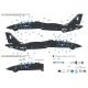 F-14A Tomcat Part.1 VX-4 'Evaluators' - Vandy 1 (for Academy 1/72)
